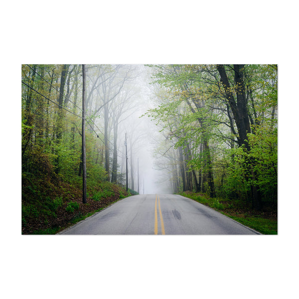 Forest Road in Fog Mystical Art Print