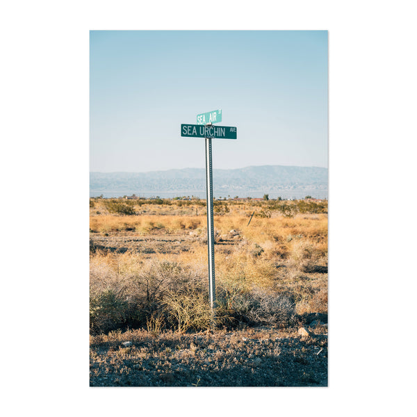 Salton Sea City California Signs Art Print