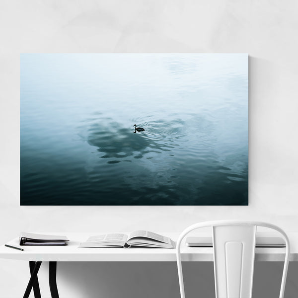 Lake Duck Floating Pond Art Print