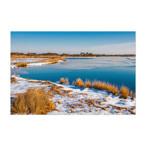 Assateague Island Maryland Snow Art Print