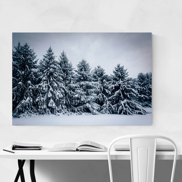 Snowy Pine Trees in Winter Art Print