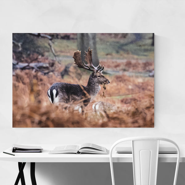 Deer Animal Wildlife London Art Print