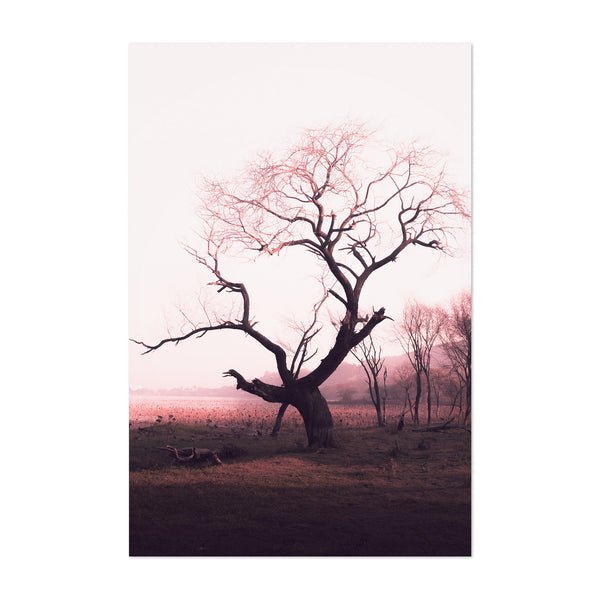 Winter Tree Melancholy Art Print