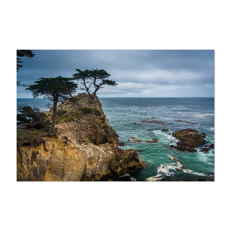 Lone Cypress 17 Mile California Art Print