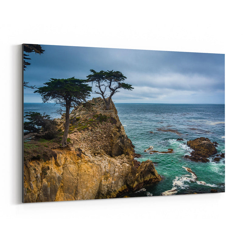 Lone Cypress 17 Mile California Canvas Art Print