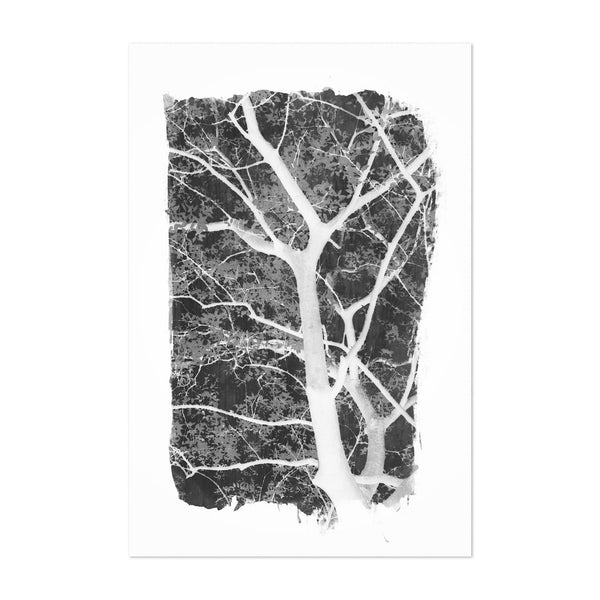 Minimal Black & White Trees Art Print