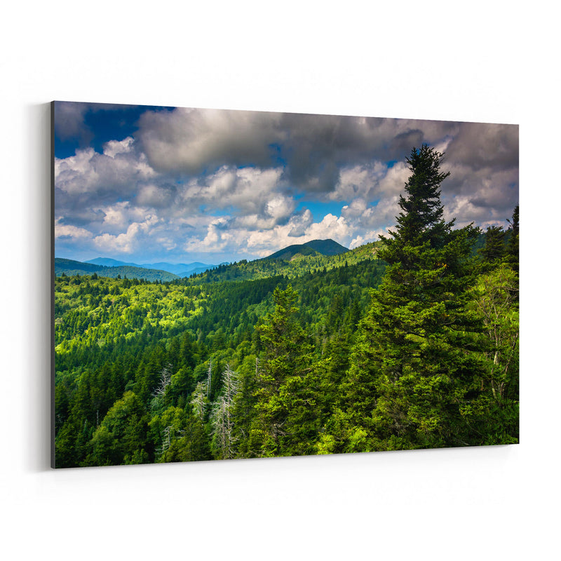 North Carolina Appalachians View Canvas Art Print