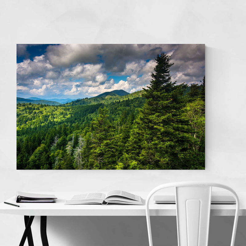 North Carolina Appalachians View Metal Art Print