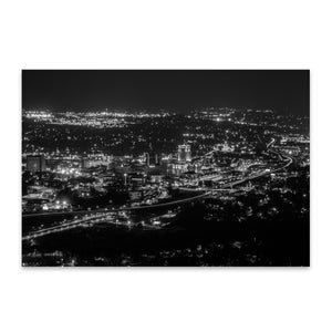 Roanoke Virginia City Skyline Metal Art Print