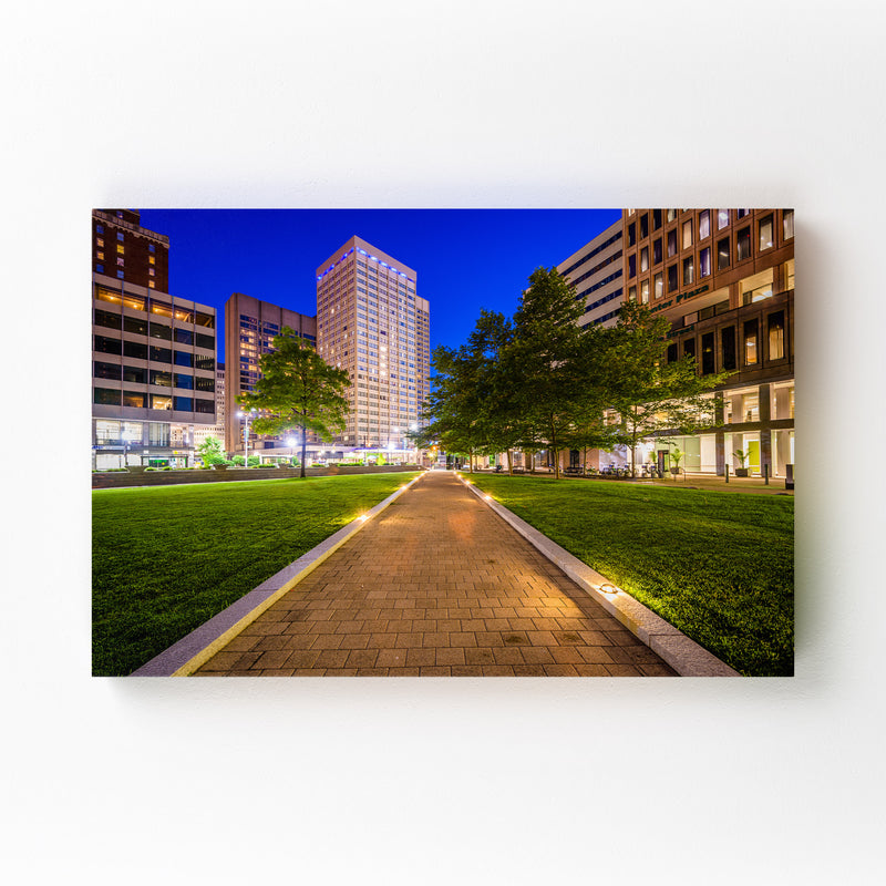 Downtown Baltimore MD Cityscape Mounted Art Print