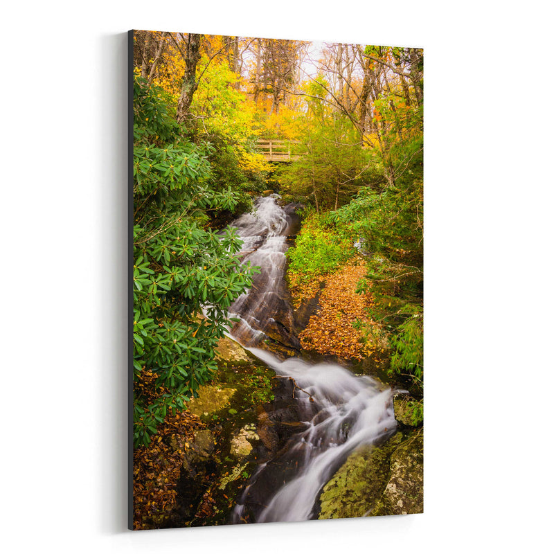 Blue Ridge Parkway Waterfall Canvas Art Print