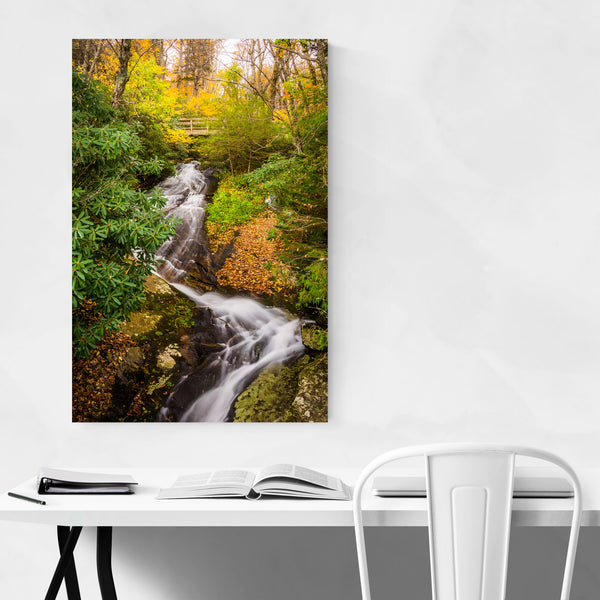 Blue Ridge Parkway Waterfall Art Print