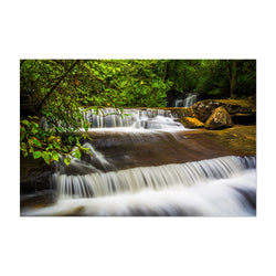 South Carolina Forest Waterfall Art Print