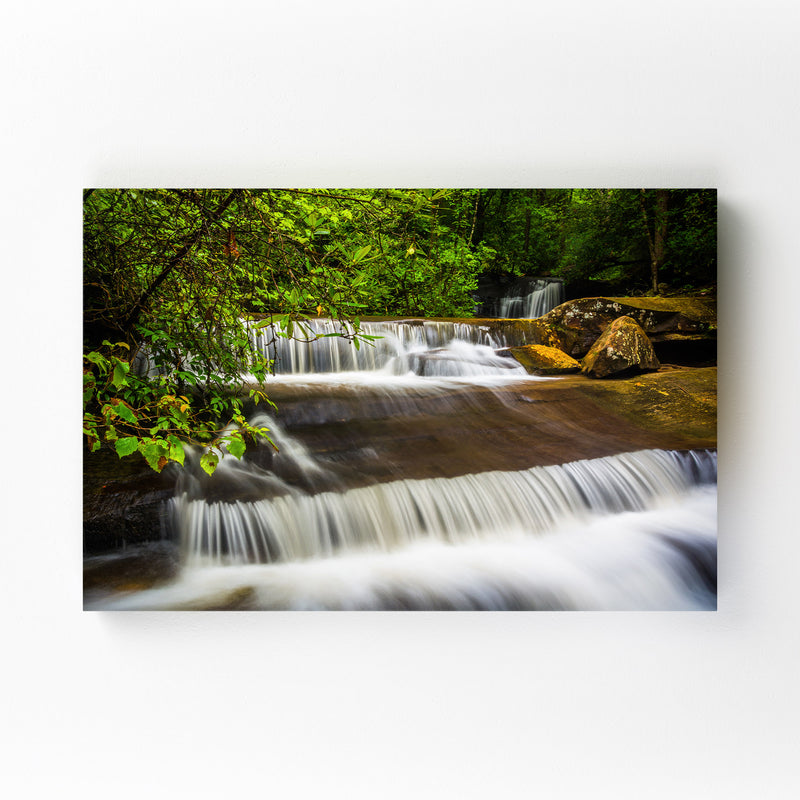 South Carolina Forest Waterfall Mounted Art Print