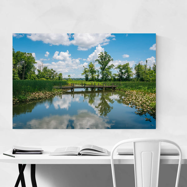 Potomac River Landscape Virginia Art Print