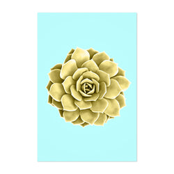 Yellow Succulent Botanical Teal Art Print