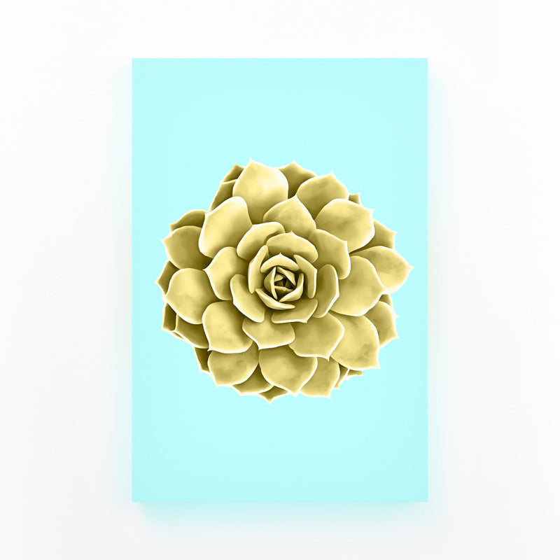 Yellow Succulent Botanical Teal Canvas Art Print
