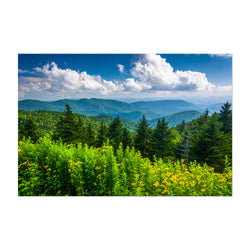 Blue Ridge Parkway Mountains Art Print