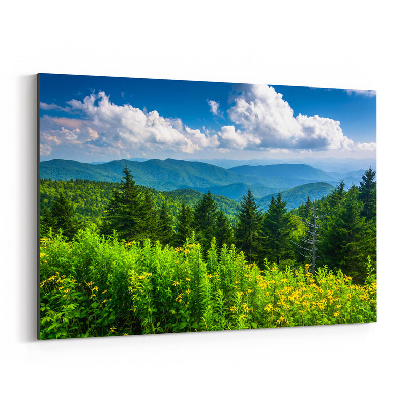 Blue Ridge Parkway Mountains Canvas Art Print