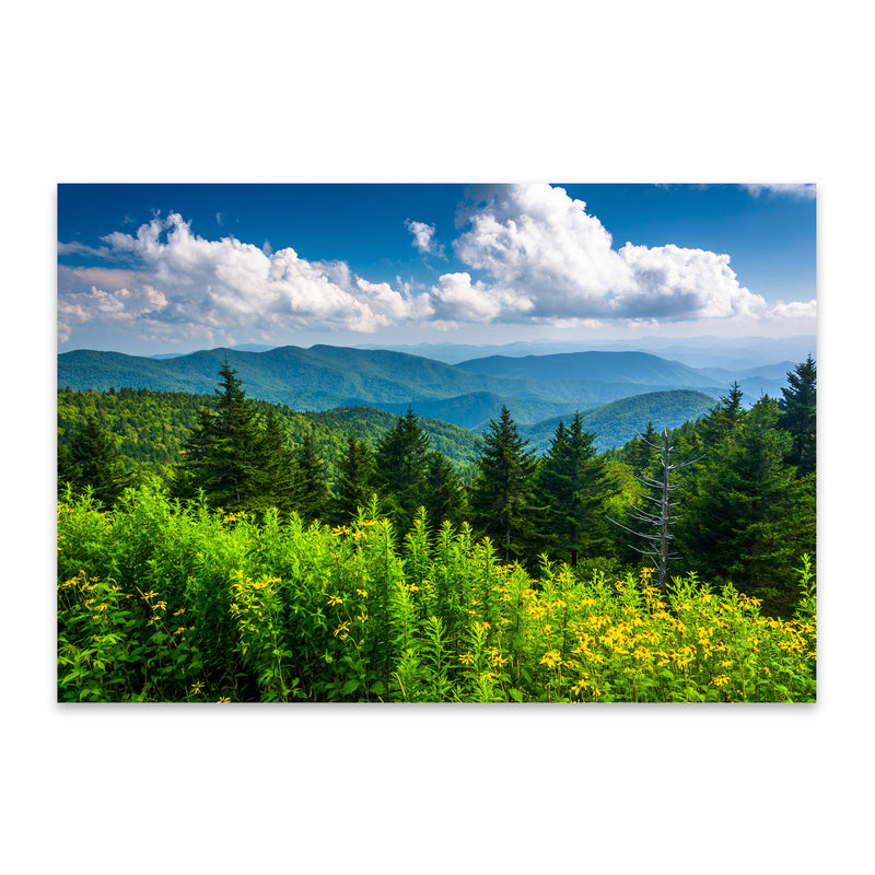 Blue Ridge Parkway Mountains Metal Art Print