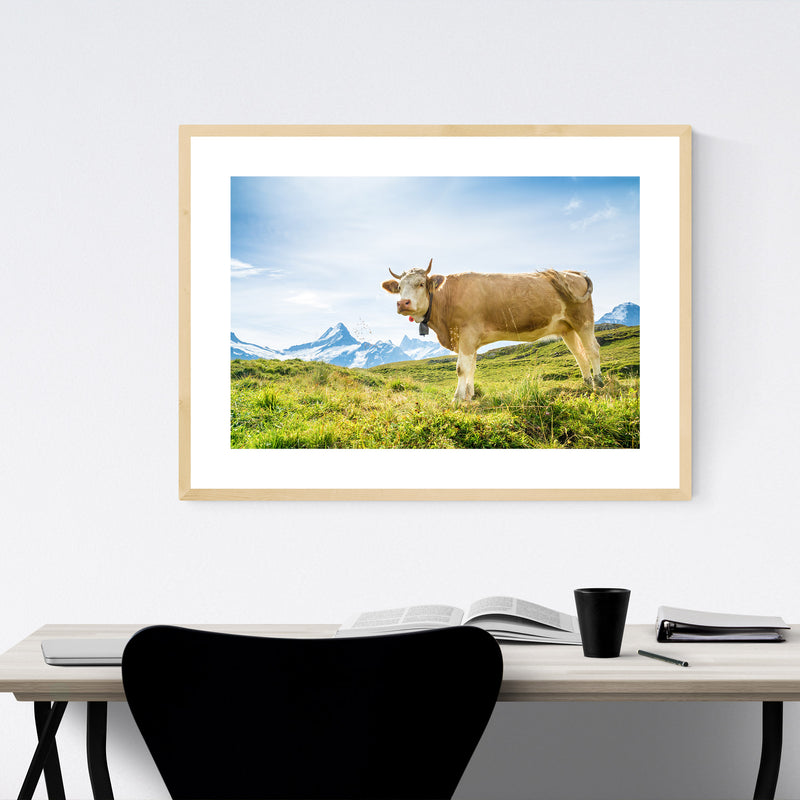 Fleckvieh Cow Switzerland Animal Framed Art Print