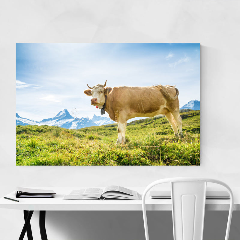 Fleckvieh Cow Switzerland Animal Canvas Art Print