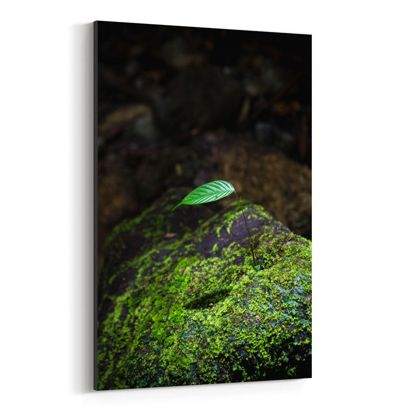 Tiny Tree Flower Forest Green Canvas Art Print