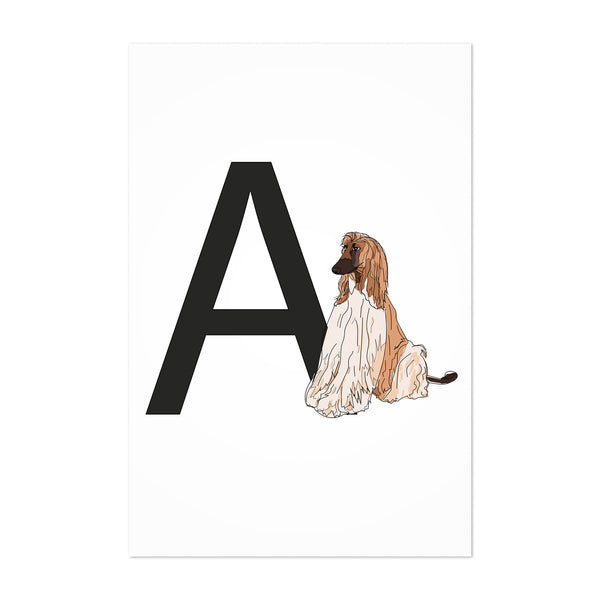 Dog Afghan Hound Illustration Art Print