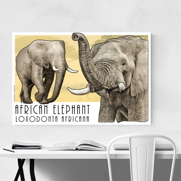 African Elephant Animal Art Print