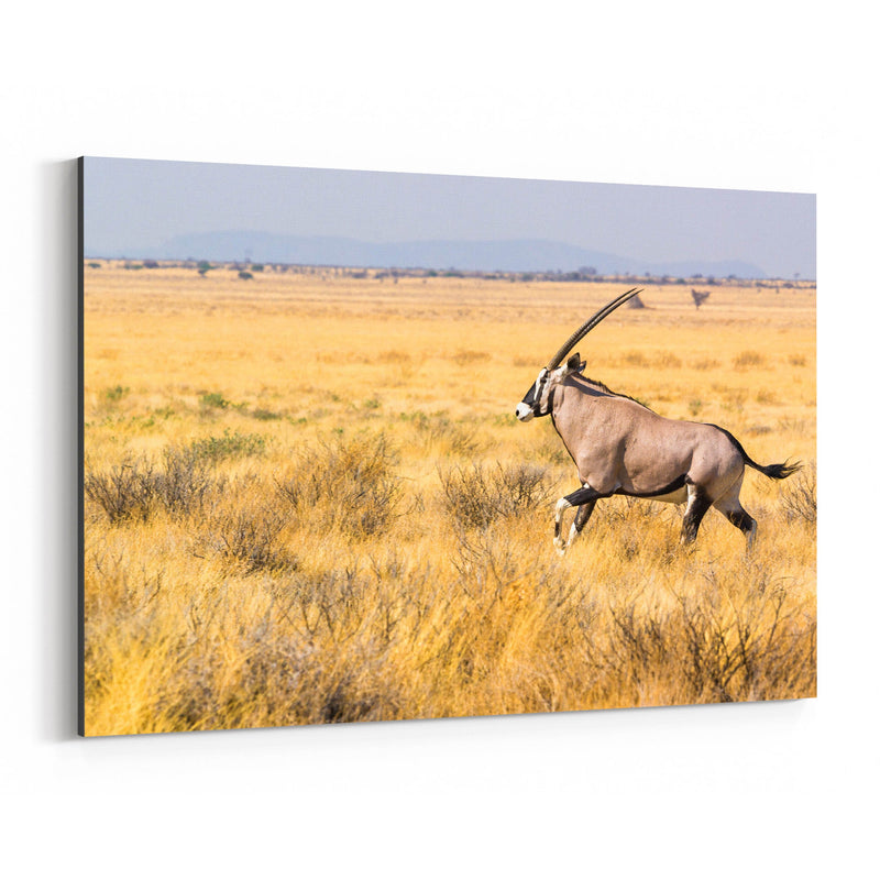 Etosha National Park Canvas Art Print