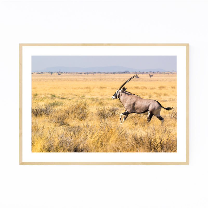 Etosha National Park Framed Art Print