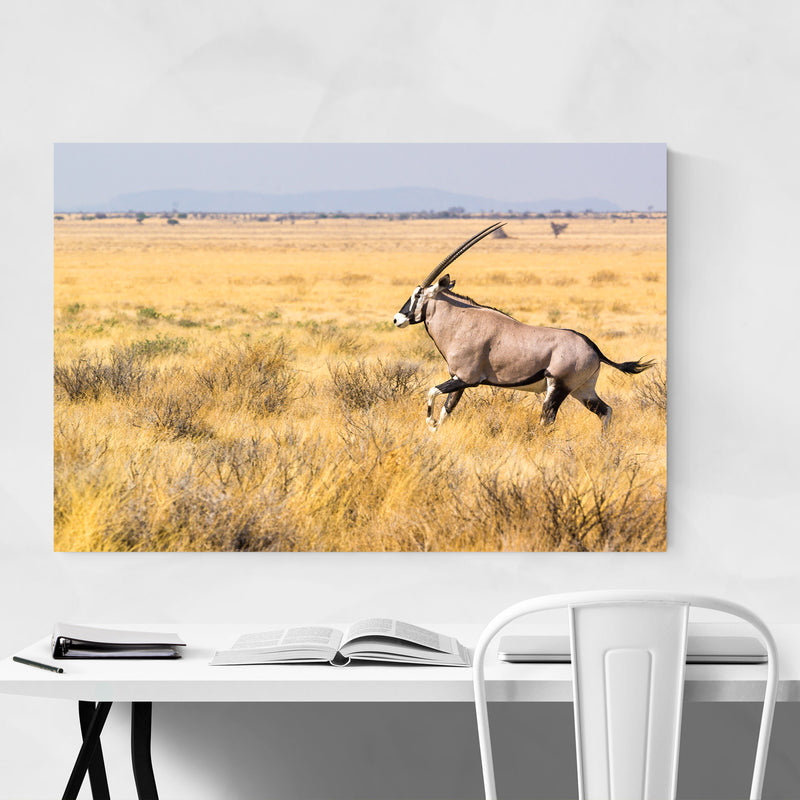 Etosha National Park Metal Art Print