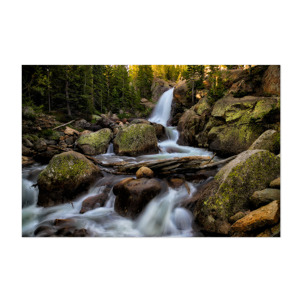 Alberta Waterfall Forest Art Print