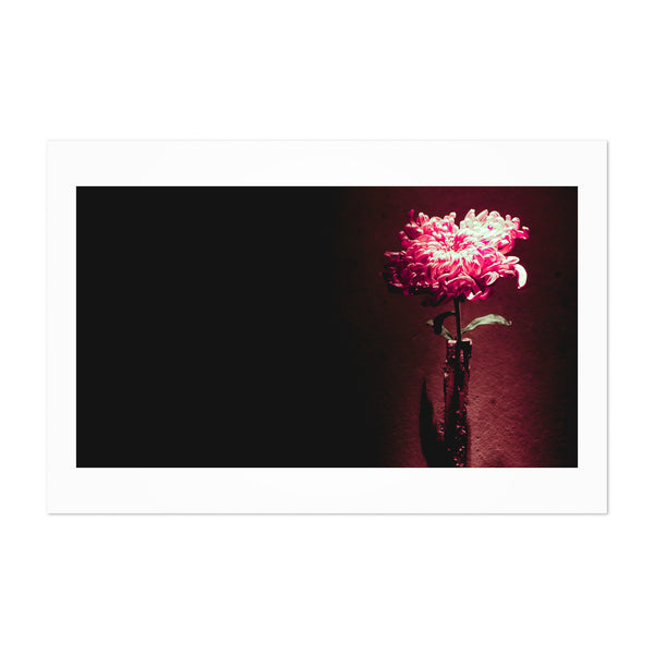 Kyoto Japan Floral Botaincal Art Print