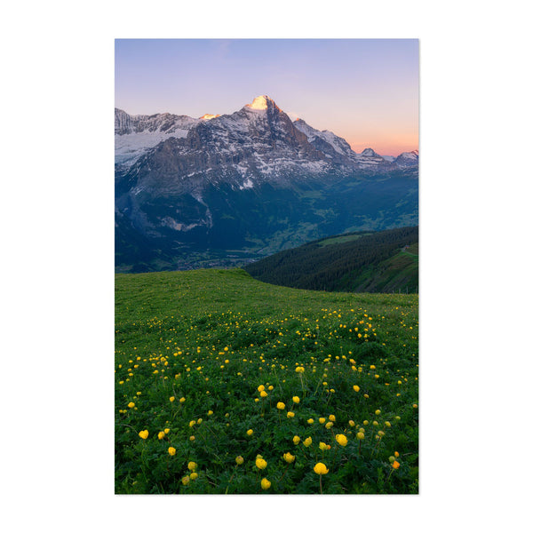 Grindelwald Switzerland Mountains Art Print