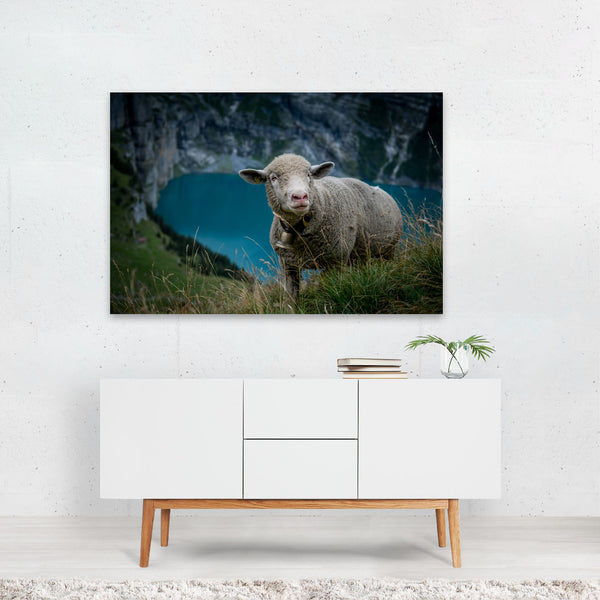 Kandersteg Switzerland Humor Sheep Art Print