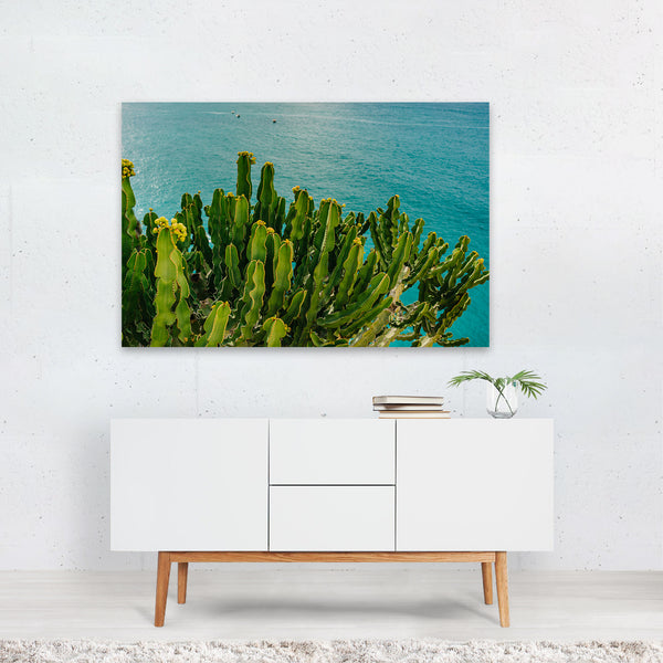Positano Italy Beach Cactus Photo Art Print