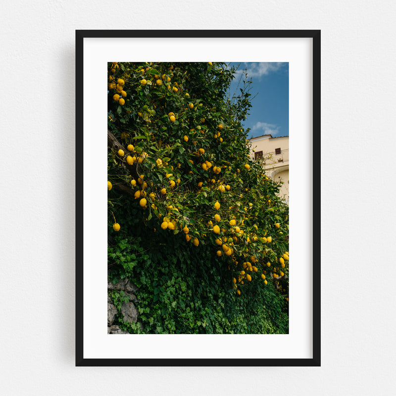 Ravello Italy Beach Lemons Photo Framed Art Print