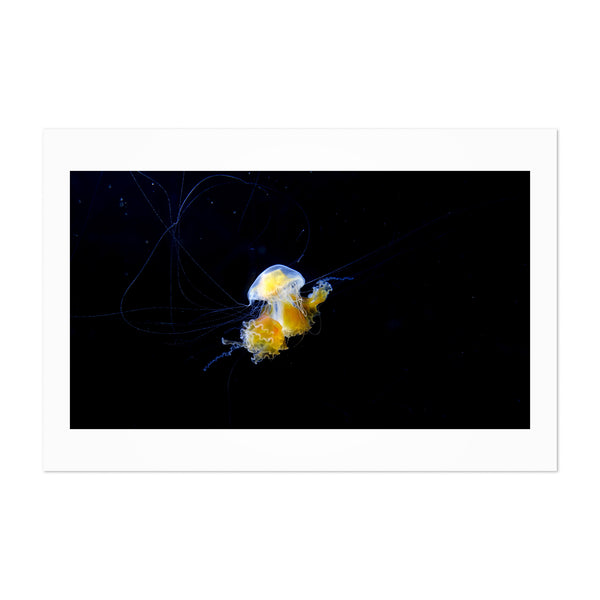 Osaka Japan Jellyfish Abstract Art Print