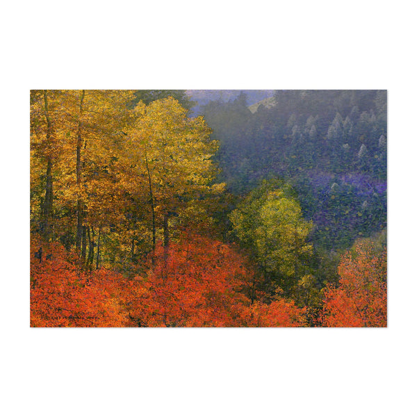 San Juan Mountains Colorado Fall Art Print