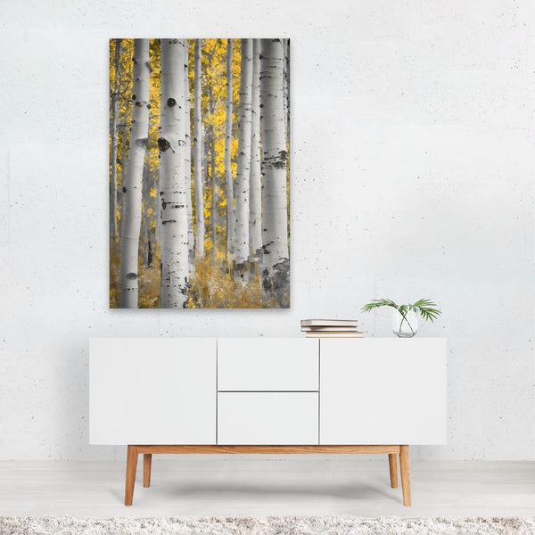 Colorado Fall Forest Nature Photo Art Print