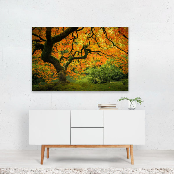 Portland Oregon Fall Nature Photo Art Print