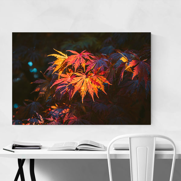 Autumn Leaves Takayama Japan Art Print