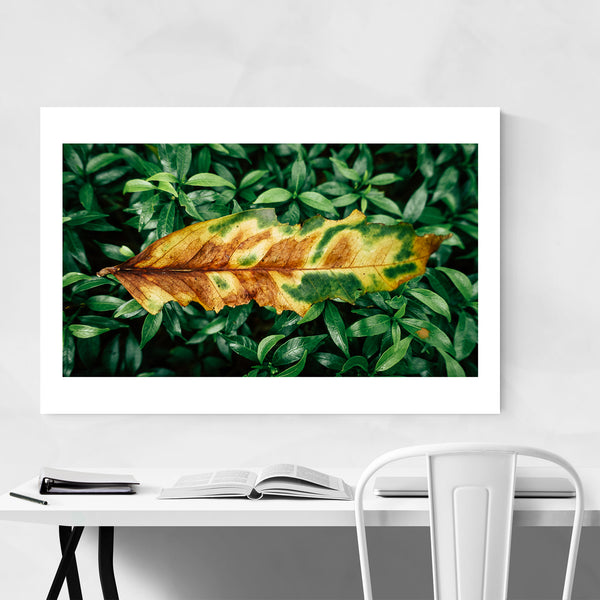 Taguig Philippines Abstract Floral Art Print