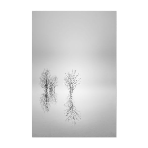 Portland Oregon Fog Winter Photo Art Print