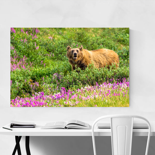 Grizzly Bear Wildlife Animal Art Print