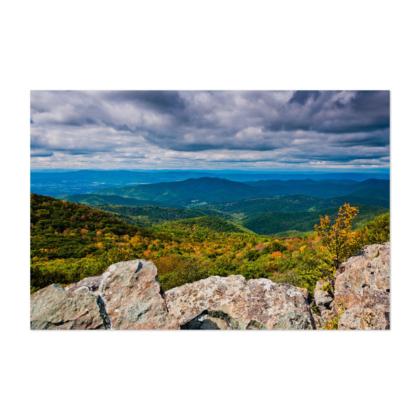 Shenandoah National Park Virginia Art Print