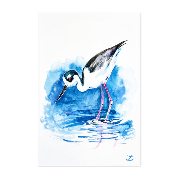 Animal Beach Birds Painting Art Print