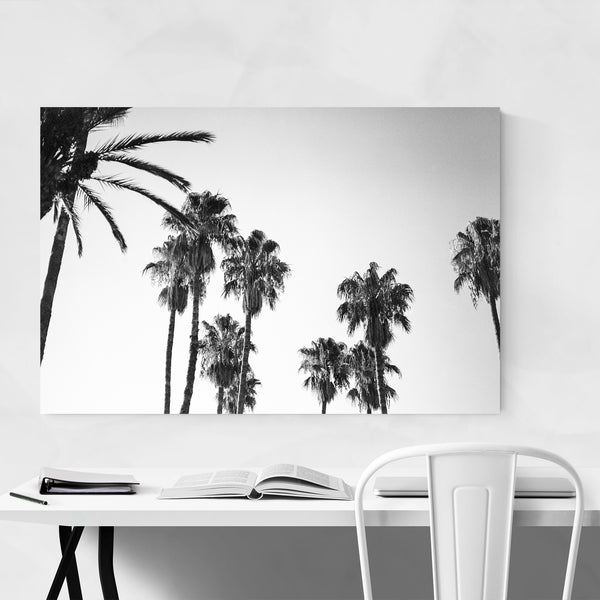 Palm Trees Black & White Coastal Art Print