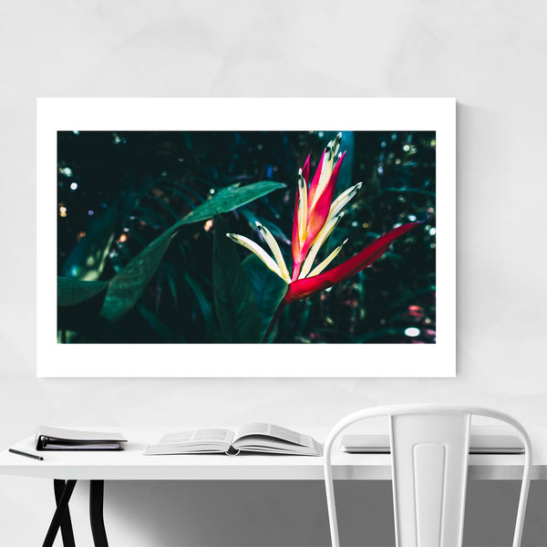 Goa India Floral Botanical Art Print